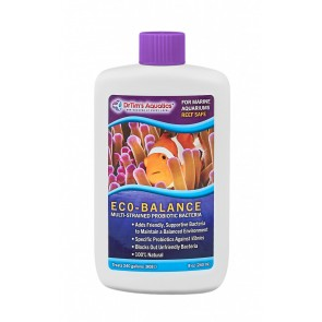 Dr Tim's Eco-Balance 8 oz
